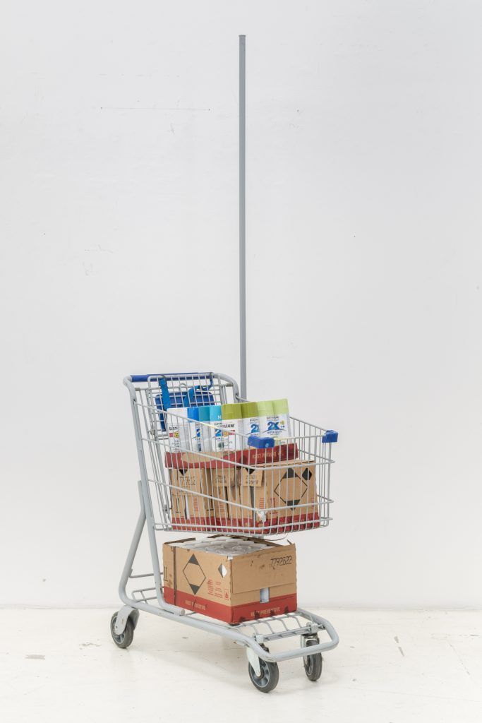 Rusto Shopping Cart © Emerald Art Studio